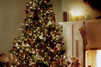 Fêter Noël avant l'heure