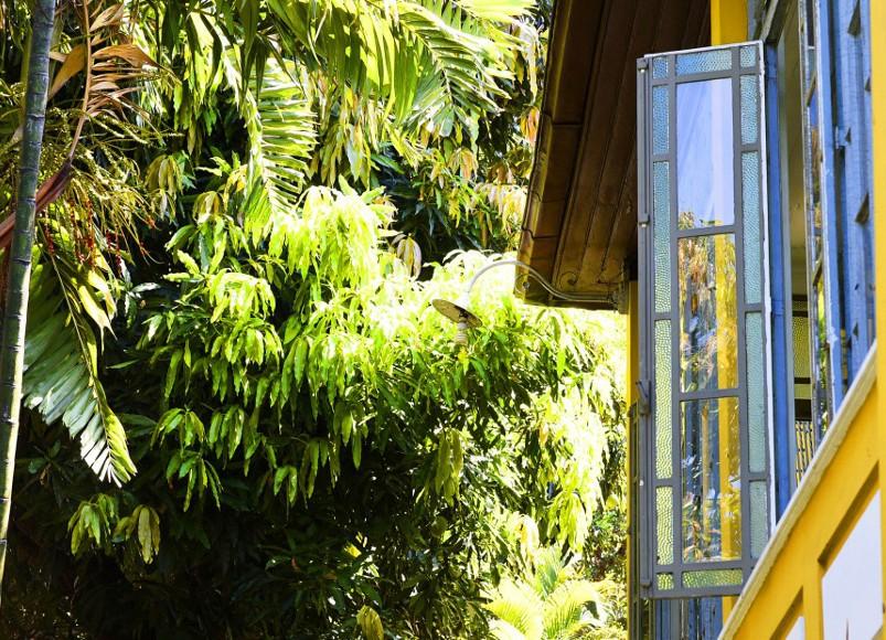 Casa Amarelo, Rio
