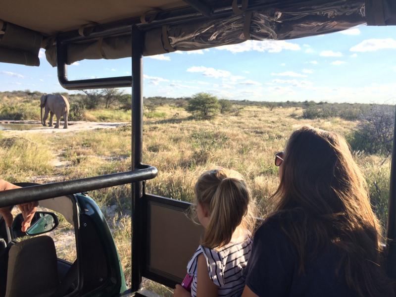 Poesy by Sophie : Un safari en famille en Afrique du Sud