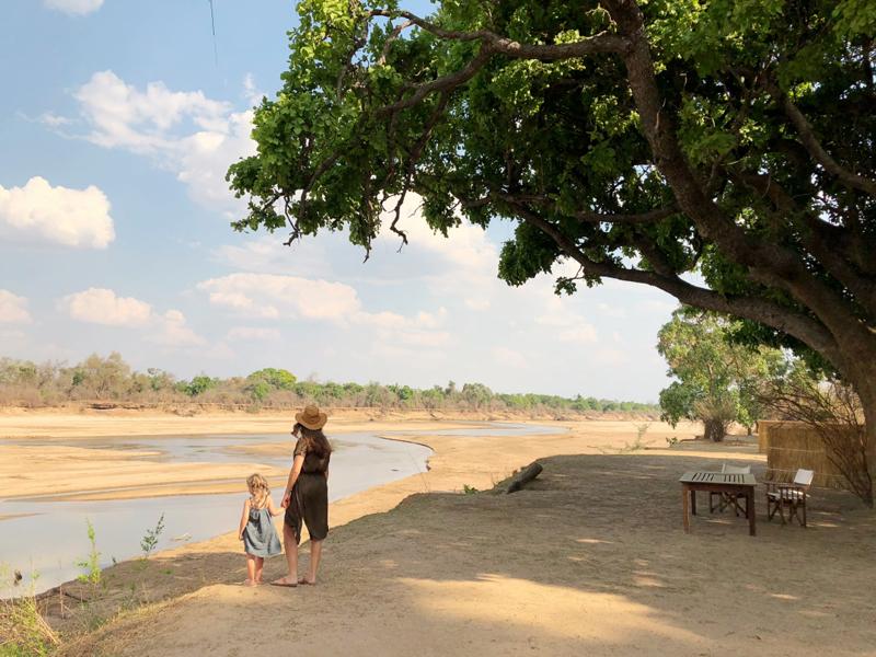 Zambie 1